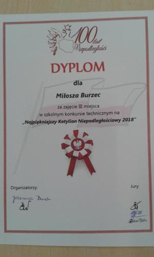 20181116 124841 (Copy)
